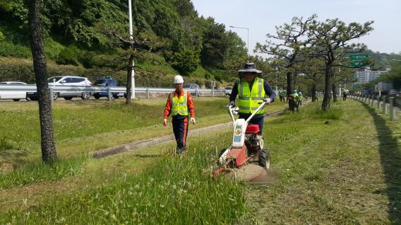 추연길 이사장 현장경영 사진 - 도시고속도로 중앙녹지대 제초작업